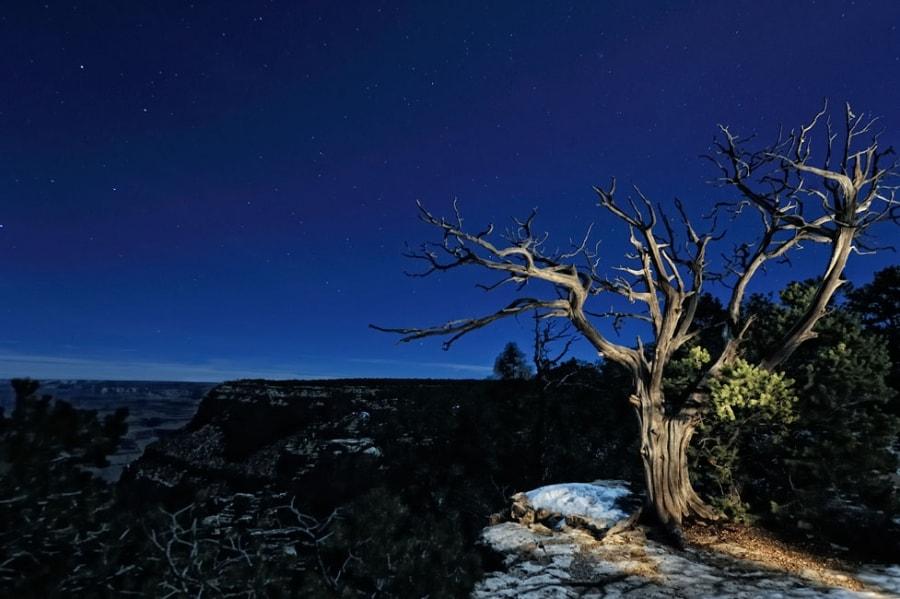 عکاسی در شب با دوربین دیجیتال